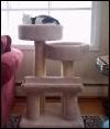 Your cat needs a nice nest!